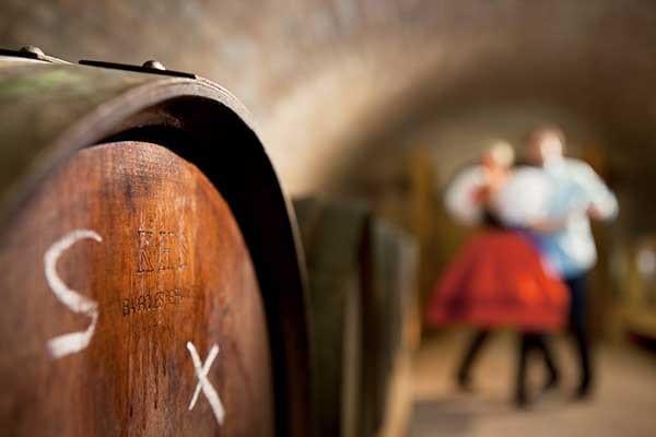 Moravische wijnroutes Tsjechië - Travelvibe