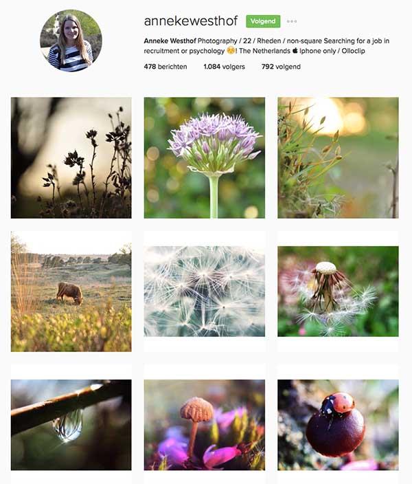 Annekewesthof op Instagram - Travelvibe