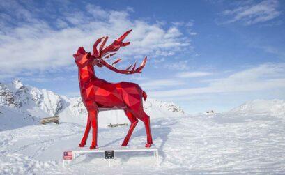 Verrassende activiteiten op de pistes van Savoie Mont Blanc - Travelvibe