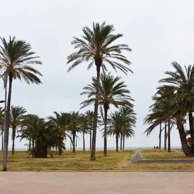 VisitValencia Playa - Travelvibe