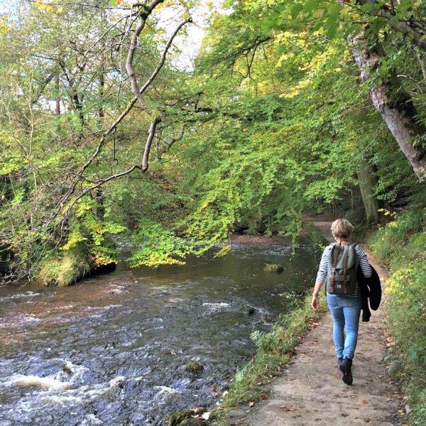 wandelen Yorkshire Dales | Travelvibe