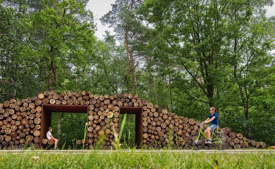 Fietsen door de bomen Limburg - Travelvibe