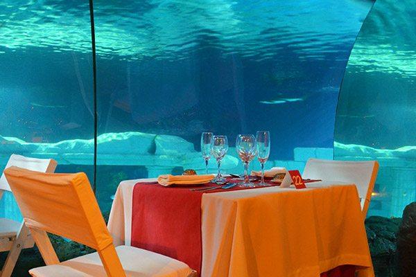 Feest aan zee Scheveningen, Valentijn themaweken - Travelvibe