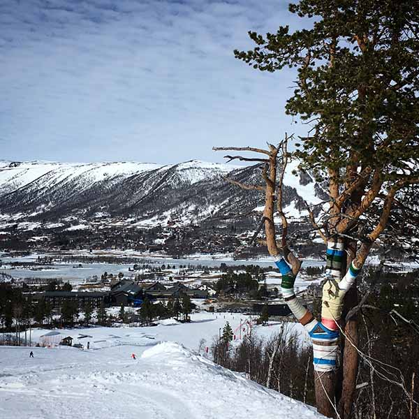 landschap wintersport Geilo Noorwegen