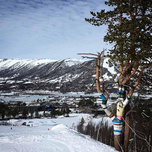 landschap wintersport Geilo Noorwegen