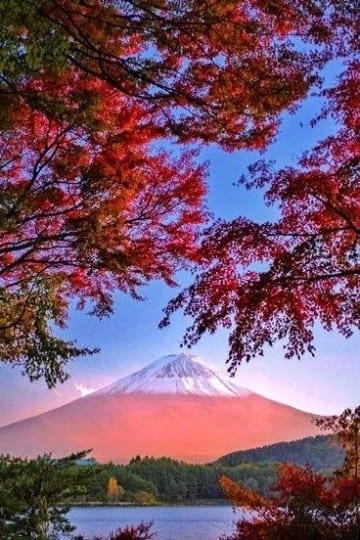Mount fuji Japan autumn, mooie herfstfoto's, Travelvibe
