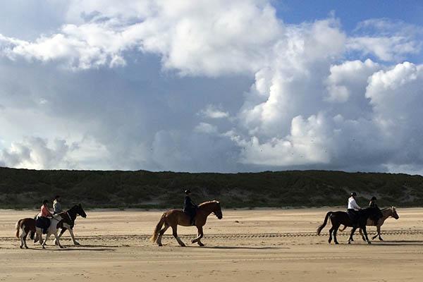 Paardrijden Vlieland