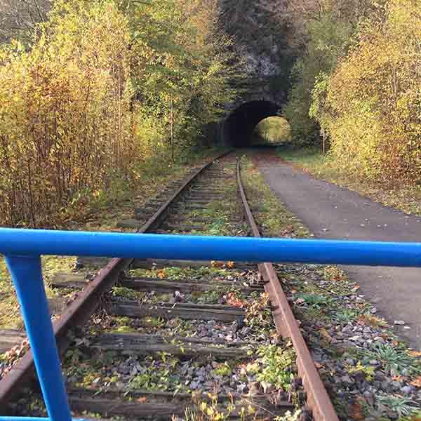 Railbikes Ardennen Molignee - Travelvibe