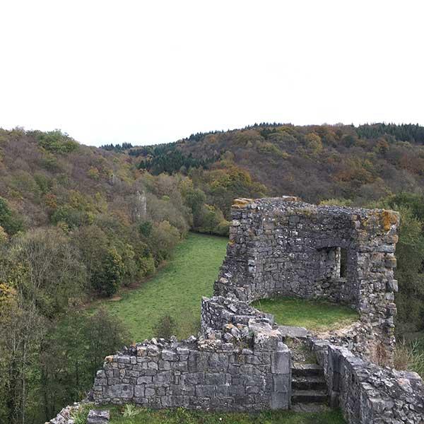 Ruines des Montaigle - Travelvibe