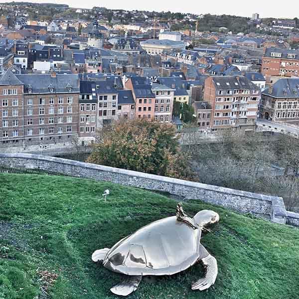 Schildpad bij Citadel Namen - Travelvibe