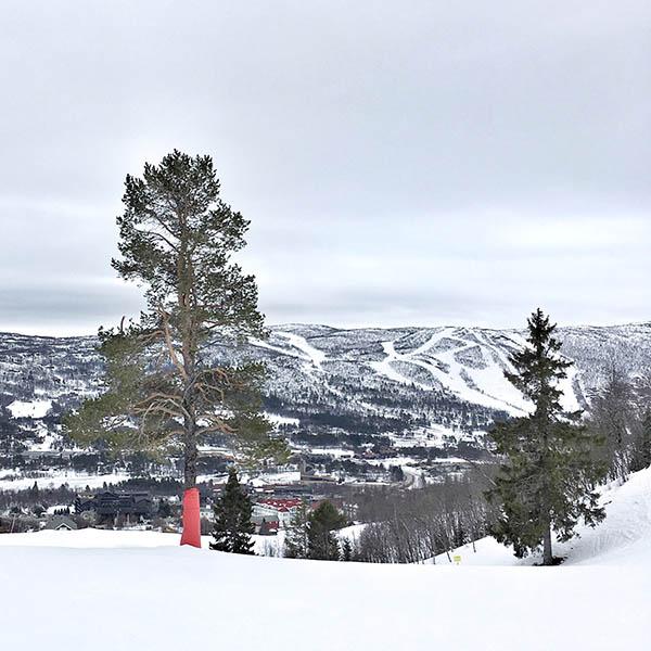 natural beauty op de pistes van Noorwegen