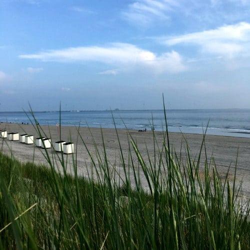 Strand Schouwen Duiven Travelvibe