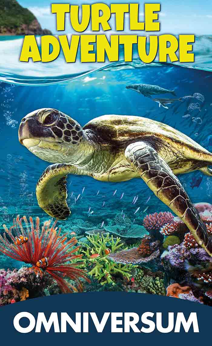 Turtle Adventure Omniversum poster - Travelvibe