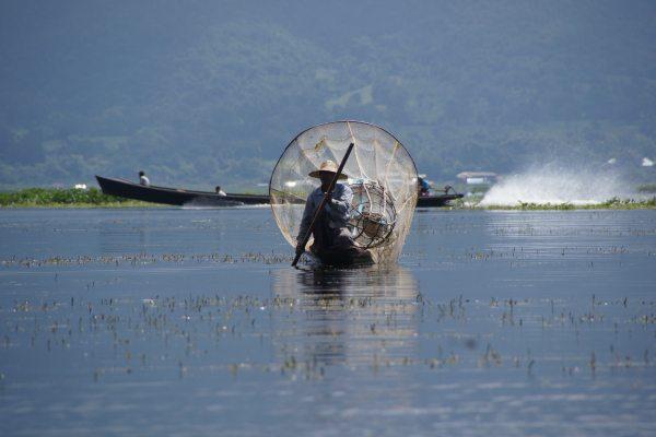 Visser Myanmar   Travelvibe