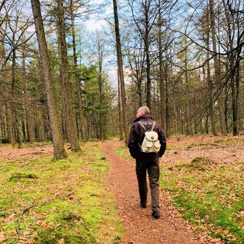 Wandelen met de boswachter | Travelvibe