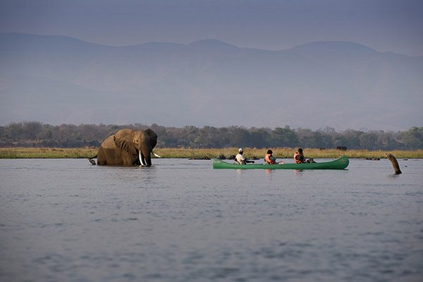 Mana Pools Zimbabwe canoeing - Travelvibe