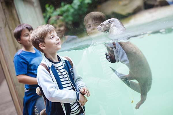 Amnéville Zoo - Travelvibe