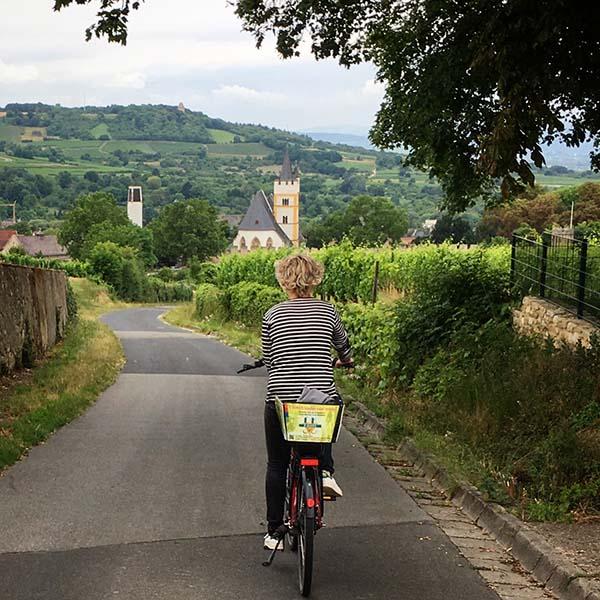 Fietsen door de wijngaarden van Ingelheim - Travelvibe