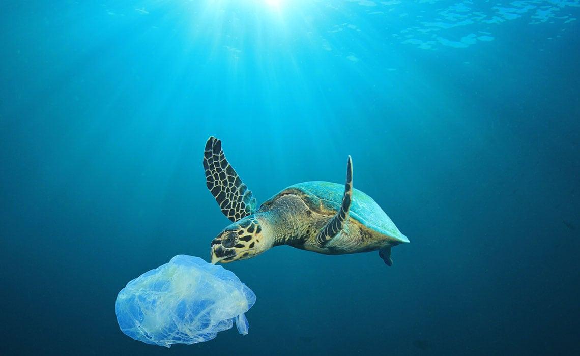 geen single use plastic op vakantie - travelvibe