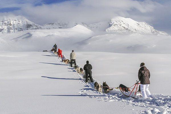 iglodorp alpi traineau met hondensledetocht