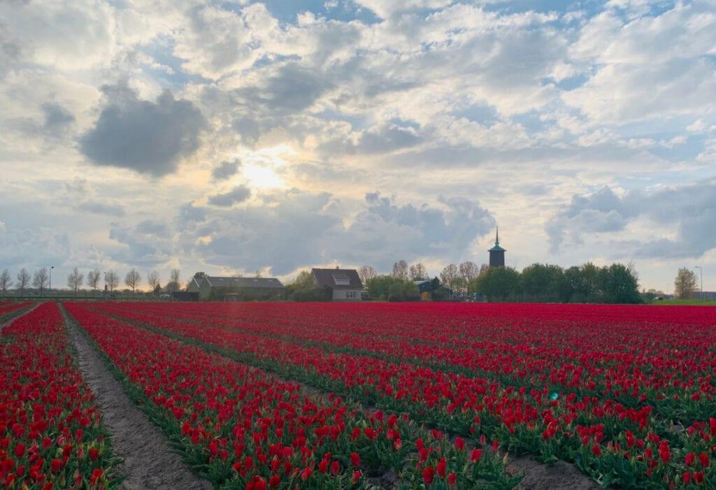 vakantie nederland tips