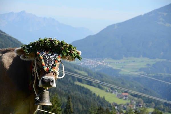 Stubai in de zomer - Travelvibe