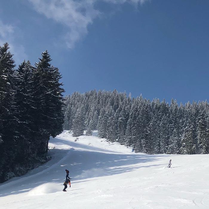 skiën in Fügen Oostenrijk - Travelvibe