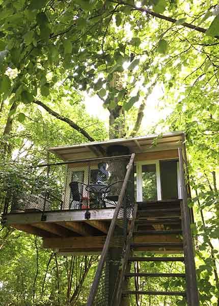 slapen in een echte boomhut Lelystad - Travelvibe