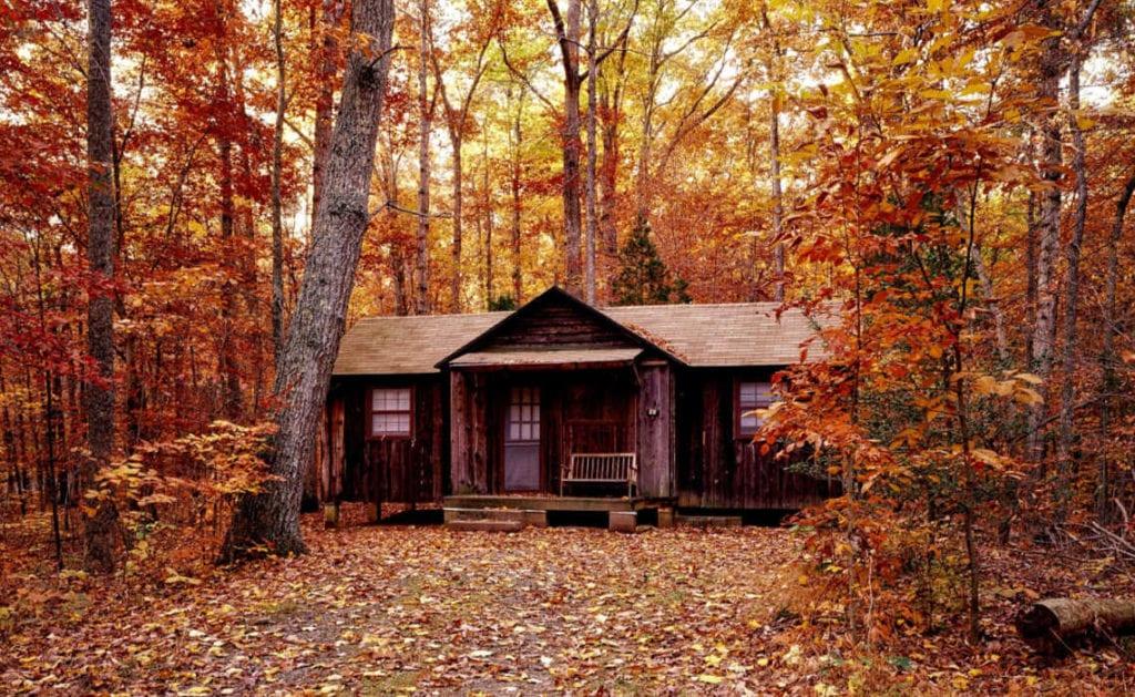 slapen in het bos | Travelvibe