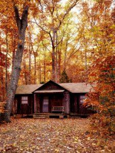Slapen in het bos: top 5 boshuisjes