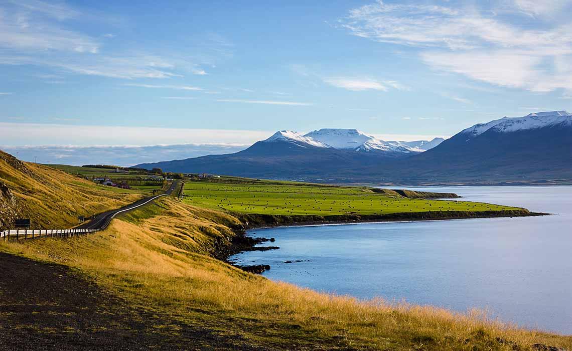 uitgestrekt IJsland in de zomer - Travelvibe