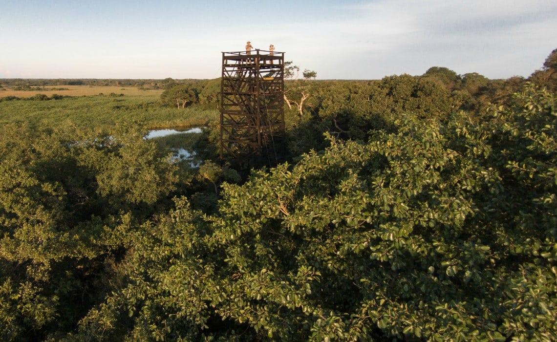 _uitkijktoren Pantanal Travelvibe