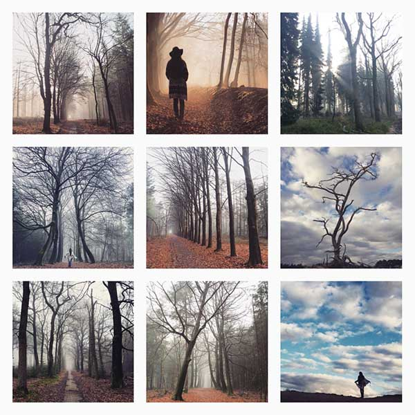 Veluwe Instagram Verwonder