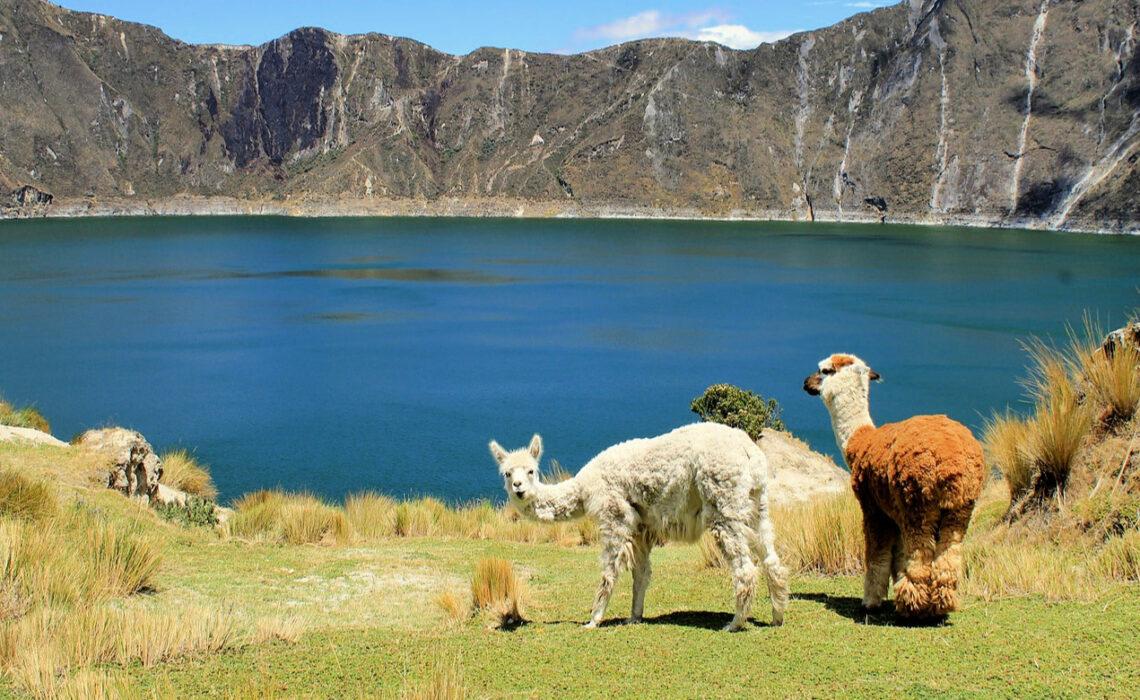 wandelen in ecuador | Trav