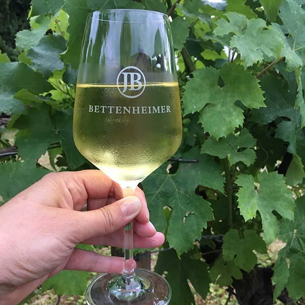 Wijn proeven in Ingelheim