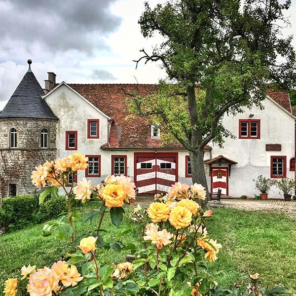 Klassiek Wijnhuis Schloss Westerhaus Ingelheim
