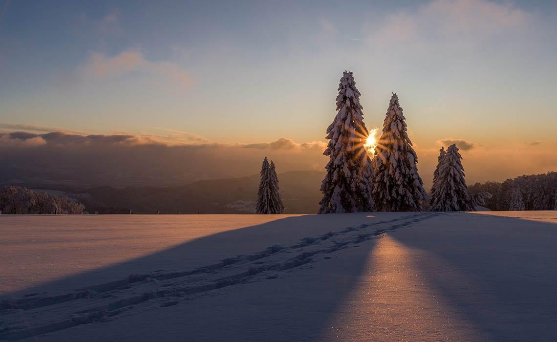zo maak je de mooiste sneeuwfoto's - Travelvibe