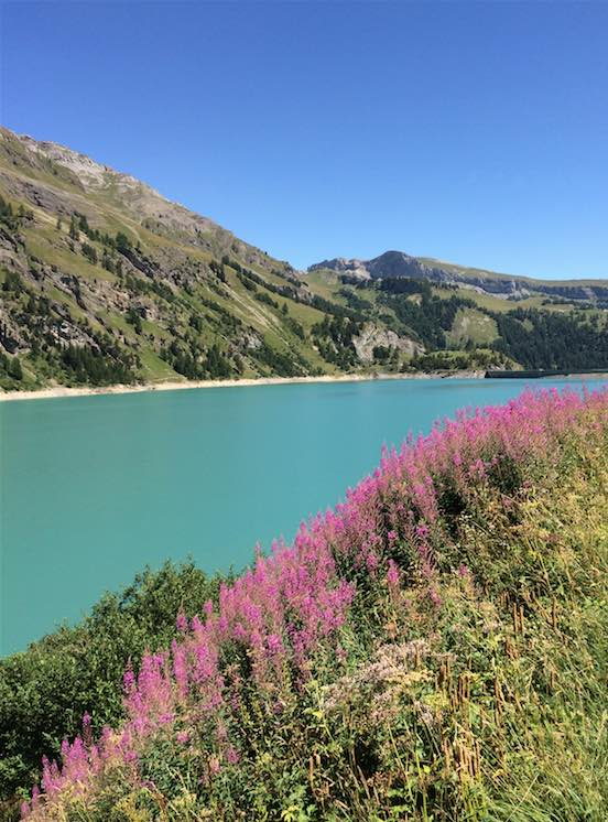 Liebster Award zomer zwitserland -Travelvibe